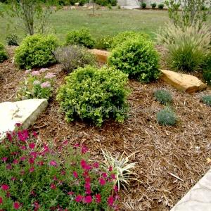 landscaping evansville in 5